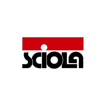 Sciola